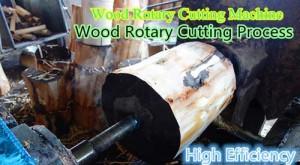 doule-segment-wood-rotary-cutting-machine