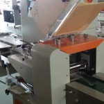 Wooden Forks Packing Machine